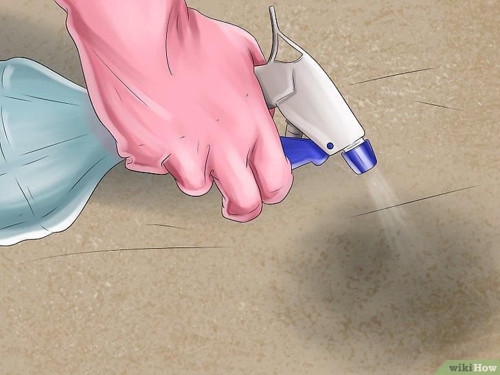 почистване на кучешка урина