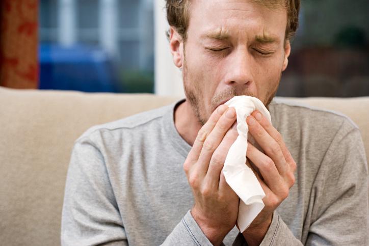 как да се справим с мухъла в дома