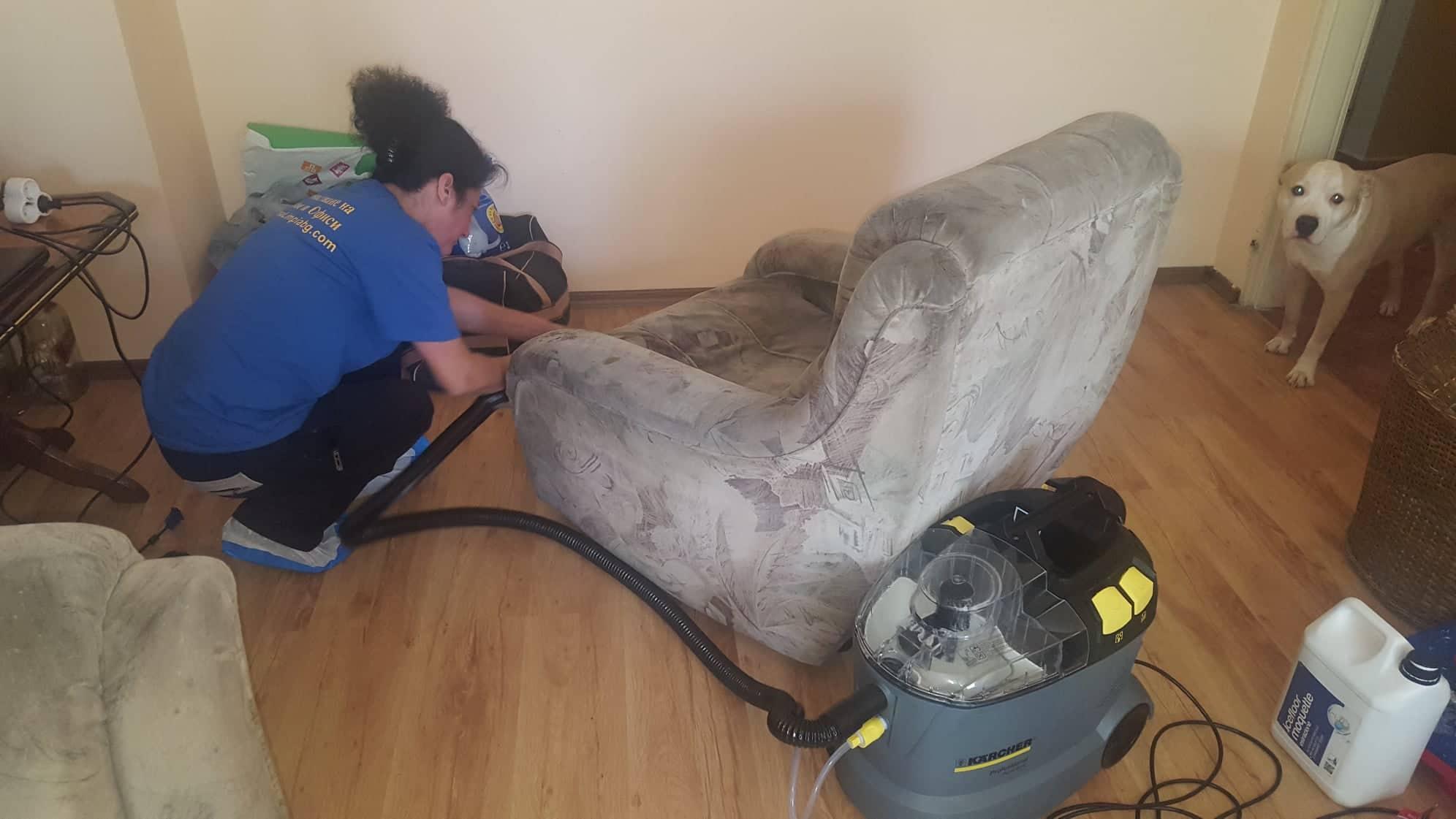 Професионално почистване в Дървеница