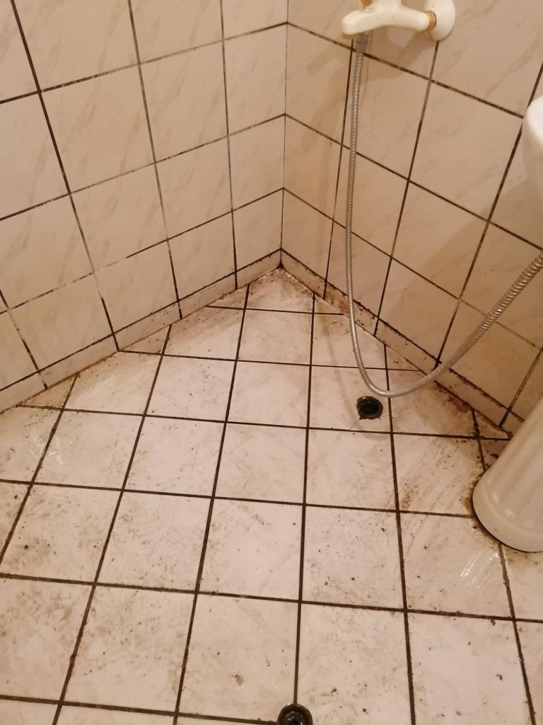 почистване на стените в банята